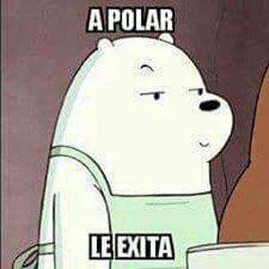 a_polar_le_exita.jpg