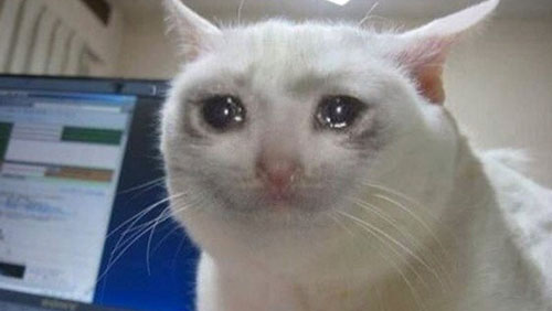 crying_cat.jpg